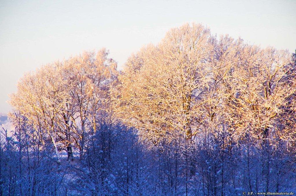 Winterperspektiven