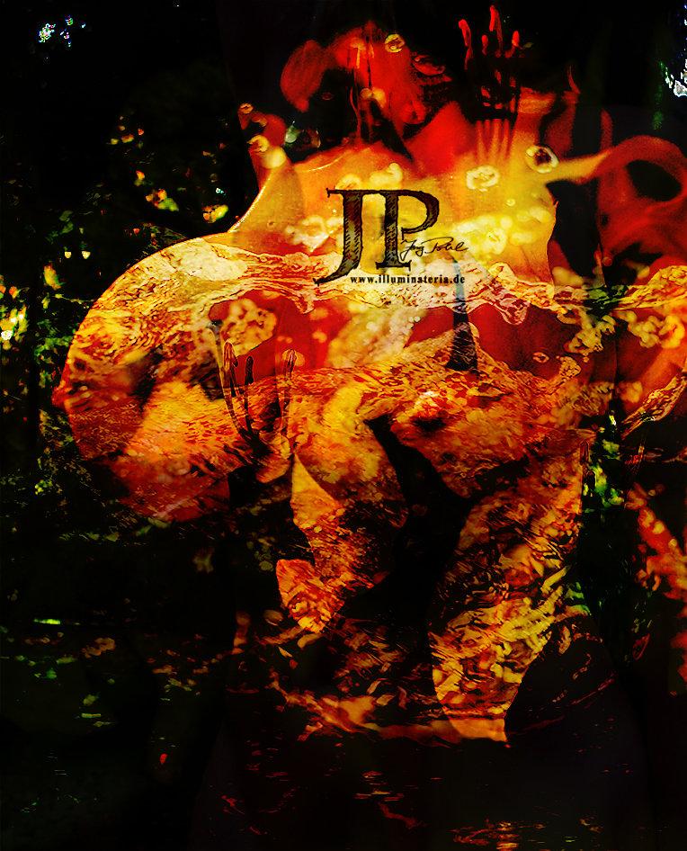 BB13BBBD.jpg